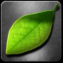 Fresh Leaves - icon
