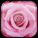 «Роза — живые обои» на Андроид