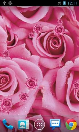 Роза - живые обои | Android