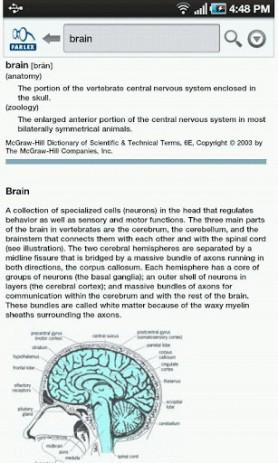 Скриншот Словарь