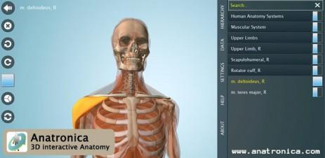 Anatomy 3D Pro - анатомия человека - thumbnail