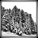 Winter Lands 3D Live Wallpaper — обои «Зимний мир» - icon
