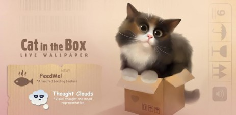 Cat in the Box - thumbnail