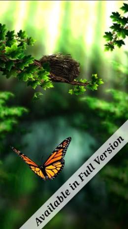 Season Zen Free | Android