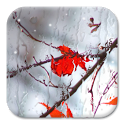 «Water on your screen — рисование на экране (лед/пар)» на Андроид