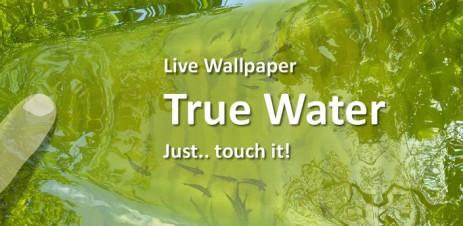 Poster Обои пруд с рыбками — True Water Live Wallpaper