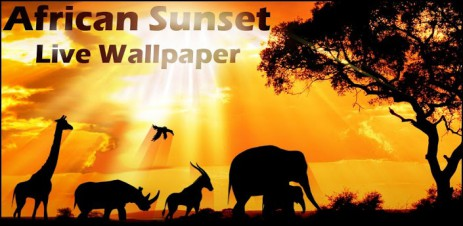 Poster закат солнца в Африке — African Sunset