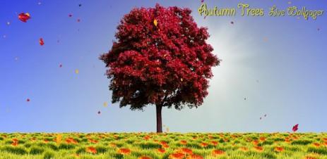 Poster Autumn Trees