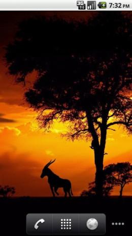 Скриншот закат солнца в Африке