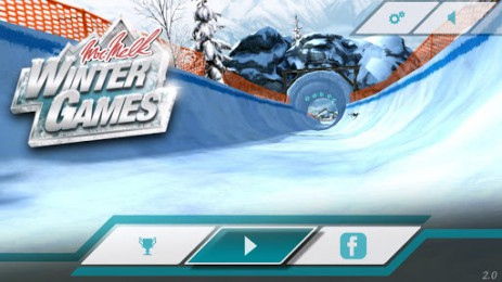 Скриншот зимние игры