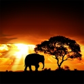 African Sunset - icon