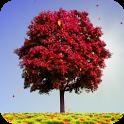 «Autumn Trees — обои «Осенние деревья»» на Андроид