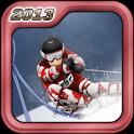 Лыжи и сноуборд 2013 Free - icon