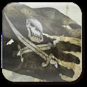 «Pirate Flag — обои «пиратский флаг»» на Андроид