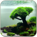 «Аквариум — живые обои» на Андроид