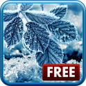 «Зимние Живые Обои» на Андроид