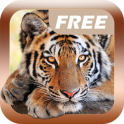 Изучаем Звуки Животных Free - icon