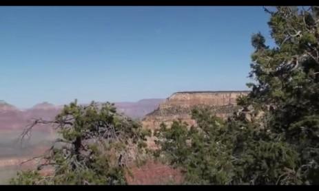 Скриншот Туристические туры