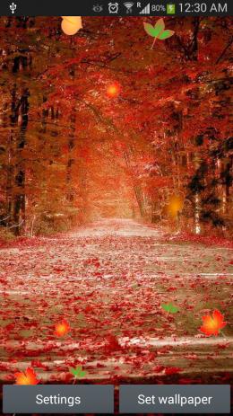 Скриншот Galaxy S5 Autumn LWP