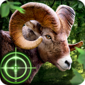 Wild Hunter 3D - icon
