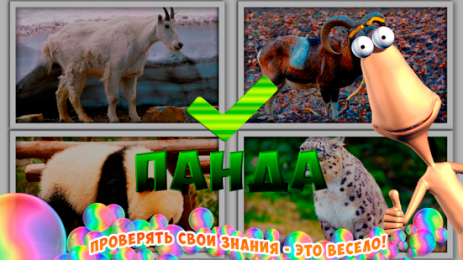 Скриншот Животные для детей: обучение