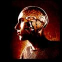 Психологические тесты на андроид скачать бесплатно