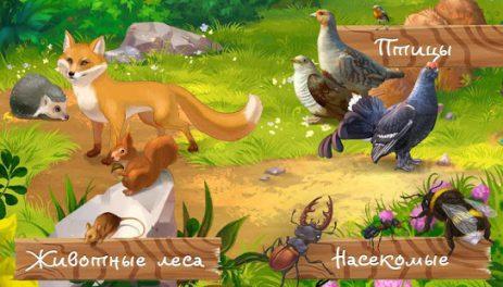 Скриншот Кто живет в лесу, детская игра