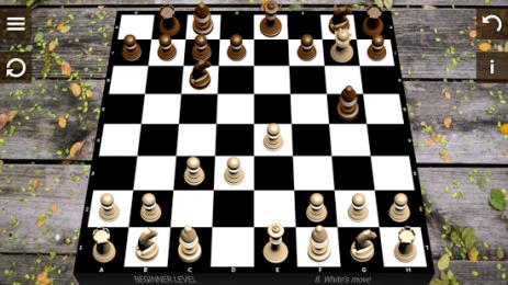 Скриншот Шахматы 4