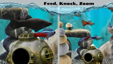 Скриншот Fish Farm 2