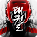 Taekwondo Game on android