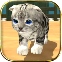 Cat Simulator: Kitty Craft on android