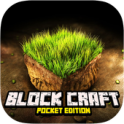 BlockCraft Pocket Edition FREE MOD on android