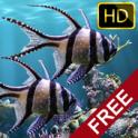 Настоящий аквариум - HD on android