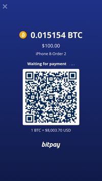 Скриншот BitPay Checkout