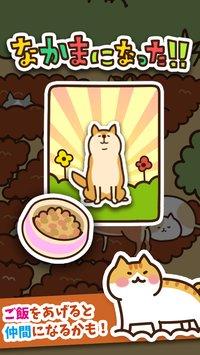 Скриншот Field of Cats
