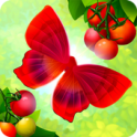 Flutter: Butterfly Sanctuary android
