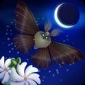 Flutter: Starlight android
