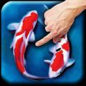 Koi – Aquarium android