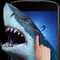 Прикоснись к акуле android