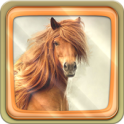 Horses Live Wallpaper - icon