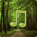 Forest Sounds Nature To Sleep - icon