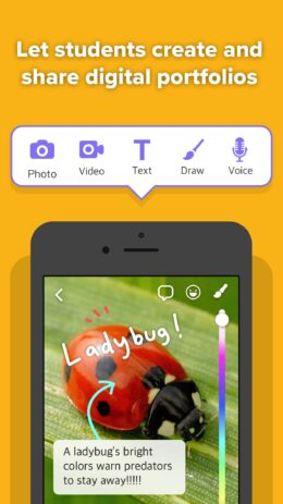 Скриншот ClassDojo: в школе и дома