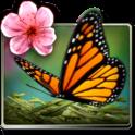 Season Zen Free - icon