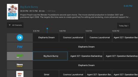 Скриншот ZalTV Player 2