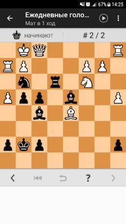 Скриншот Шахматные головоломки