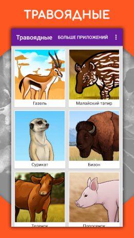 Скриншот Как рисовать животных шаг за шагом, уроки 1