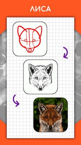Скриншот Как рисовать животных шаг за шагом, уроки 2