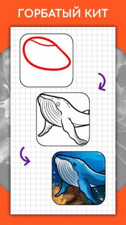 Скриншот Как рисовать животных шаг за шагом, уроки 5