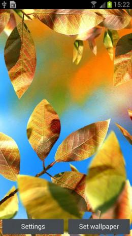 Скриншот живые листья