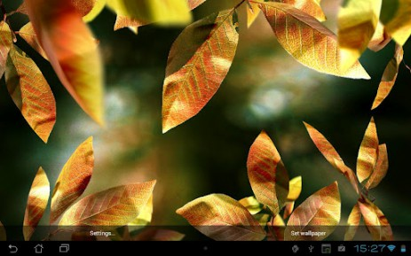 Fresh Leaves | Android